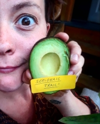 Seriokais Trail An ancient Mexican story of love, loss, betrayal, avocados and…beastiality?